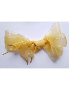 Veters organza lint goud 40mm - 120cm